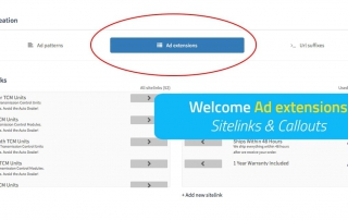 Ad extensions - Sitelinks & Callouts for product text ads in BlueWinston.com