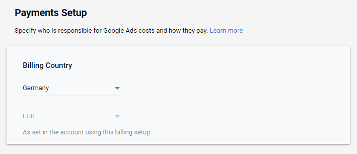 Google Ads Payments Info